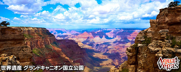グランドキャニオン国立公園を訪れる日本語ガイドオプショナルツアー