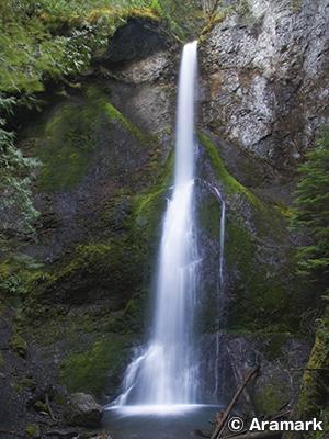 メリーミア滝(Marymere Falls)