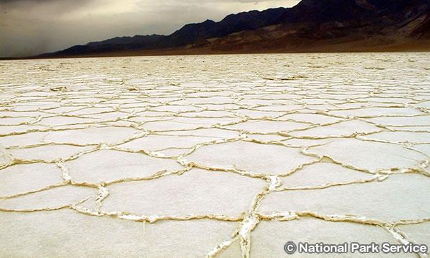 塩の形成(ソルトポリゴン)