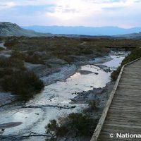 ソルトクリーク 年間で数ヶ月だけ現れる小川を観察