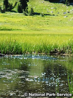 コールド・ボイリング湖 & クラムボー湖
