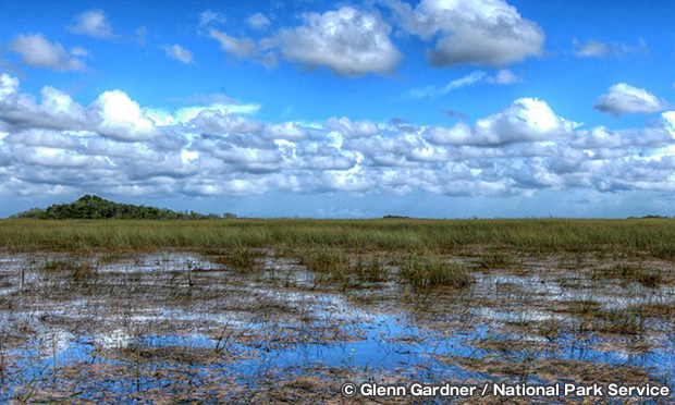エバーグレーズ国立公園の雨季